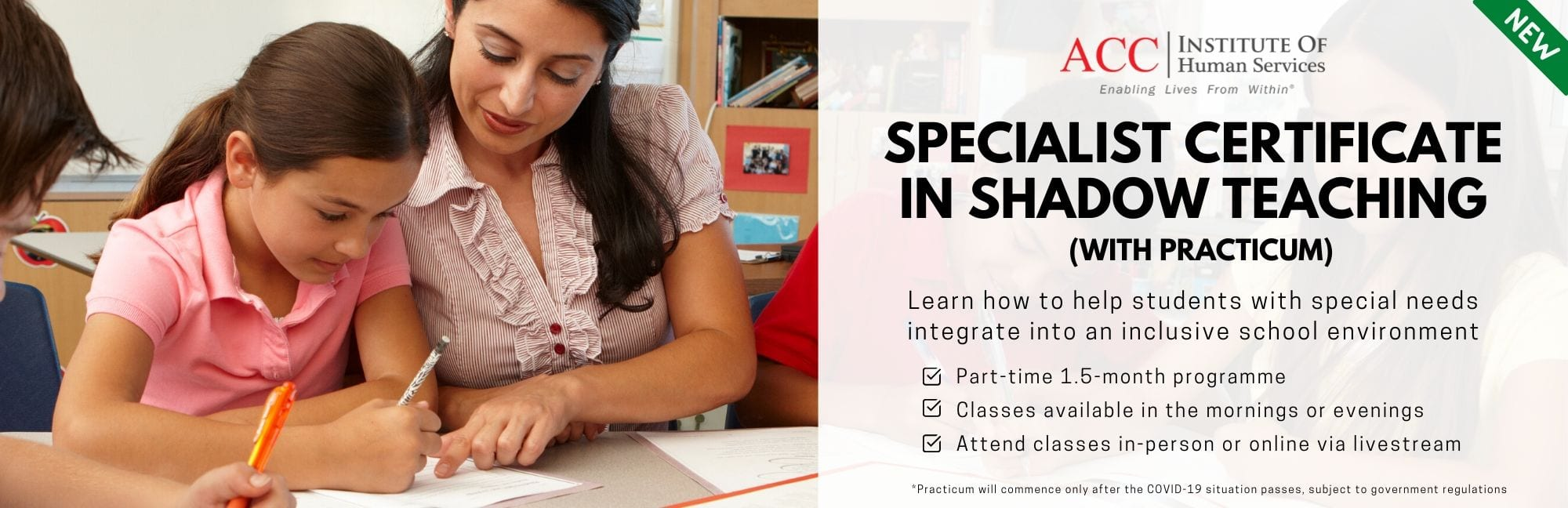 Specialist certificate in shadow teaching